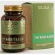 """БАД REVITALL THYROSTRESS, 60 КАПСУЛ Поддержка щитовидной железы """"ТироСтресс"""""""